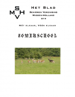 SVMH_2019_Zomerschool